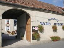 Champagne-Waris-Hubert---Avize